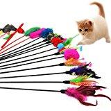 Westeng, Cannetta con piume, gioco divertente per gatti con campanellino, 4 pezzi (colore casuale): Amazon.it: Prodotti per anim