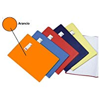 Favorit 100460667 Protegge documento Arancione