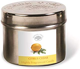GREEN TREE CANDLE 0805460312447 Citrus Cedar Candela profumata