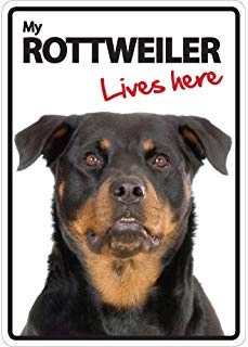 Magnet & Steel Rottweiler Lives Here A5 Sign