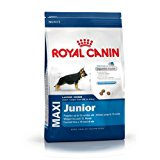Royal Canin Alimento Cane Maxi Junior - 15000 gr: Amazon.it: Prodotti per animali domestici