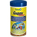 Tetra Guppy Colour - Mangime in Granuli per Pesci Tropicali - 250 ml: Amazon.it: Prodotti per animali domestici