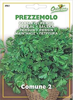 Hortus 43PRE4961 Maxi Busta Ortovivo Prezzemolo Comune 2, 12x0.2x16.5 cm