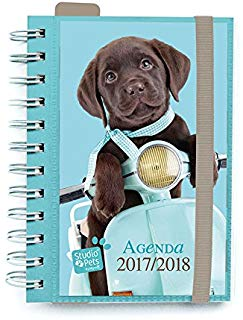Agenda escolar 2017-2018 Studio Pets Dog (in portoghese)
