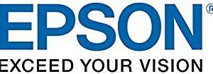 Epson Workforce Enterprise WF-C20600 Black Ink