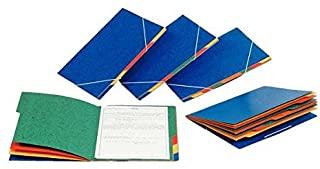 ESSELTE RAINBOW - cartella in cartoncino - 4 divisori - 55550